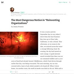"The Most Dangerous Notion in ""Reinventing Organizations"""