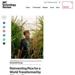 TECHNOLOGY REVIEW 04/05/17 Reinventing Rice for a World Transformed by Climate Change