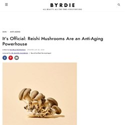 Reishi Mushrooms: The Complete Guide