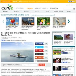 CITES Fails Polar Bears, Rejects Commercial Trade Ban