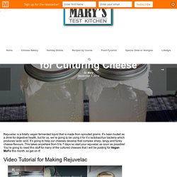 Make Your Own Rejuvelac for Culturing Cheese - Mary's Test Kitchen