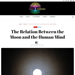 The Relation Between the Moon and the Human Mind ~ Fractal Enlightenment