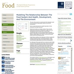 Modelling the Relationship between the Food System and Health, Development, and the Environment