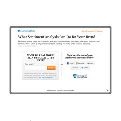 Customer Relationships - What Sentiment Analysis Can Do for Your Brand