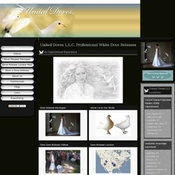 White Dove Releases, Wedding Doves, Funeral Doves & Dove Franchises - Home