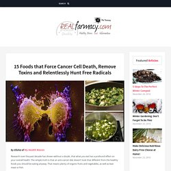 15 Foods that Force Cancer Cell Death, Remove Toxins and Relentlessly Hunt Free Radicals – REALfarmacy.com