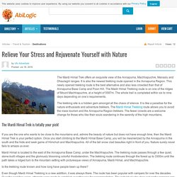 Relieve Your Stress and Rejuvenate Yourself with Nature