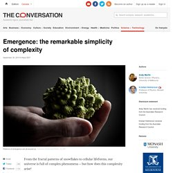 Emergence: the remarkable simplicity of complexity