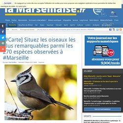 [#Carte] Situez les oiseaux les plus remarquables parmi les 270 espèces observées à #Marseille