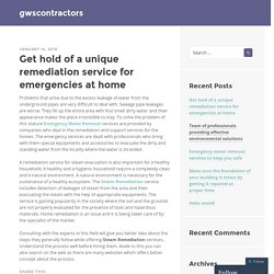 Get hold of a unique remediation service for emergencies at home