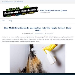 How Mold Remediation In Queens Can Help The People To Meet Their Needs