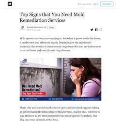 Top Signs that You Need Mold Remediation Services - America Restorations, LLC - Medium