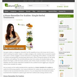 6 Home Remedies For Scabies- Simple Herbal Treatments
