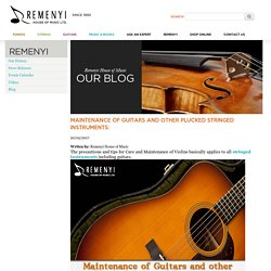 Maintenance of Guitars and other Plucked Stringed Instruments