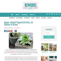 Hypertufa Pots (Perlite, Peat Moss, Cement)