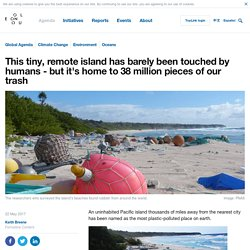 *****This tiny, remote island has barely been touched by humans - but it's home to 38 million pieces of our trash
