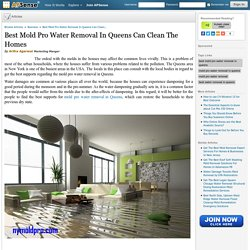 Best Mold Pro Water Removal In Queens Can Clean The Homes