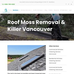 Roof Moss Removal & Killer Service in Vancouver BC