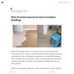 Role of mold removal services in modern buildings