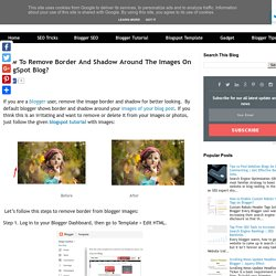 How To Remove Border And Shadow Around The Images On BlogSpot Blog?