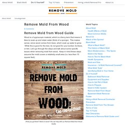 Remove Mold From Wood - 2014 Guide to mold removal