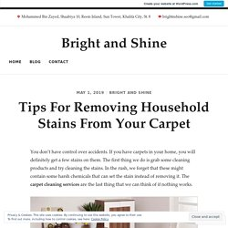 Tips For Removing Household Stains From Your Carpet – Bright and Shine