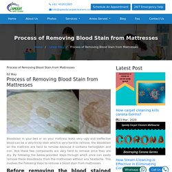 Process of Removing Blood Stain from Mattresses