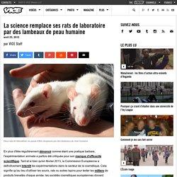 La science remplace ses rats de laboratoire par des lambeaux de peau humaine