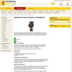 Rempoter vos plantes d'intérieur