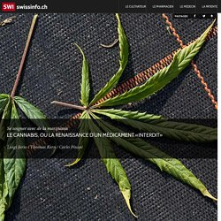 """Le cannabis, ou la renaissance d'un médicament """"interdit"""""""