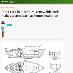 Put a cork in it: Natural renewable cork makes a comeback as home insulation