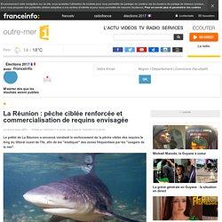 La Réunion : pêche ciblée renforcée et commercialisation de requins envisagée - outre-mer 1ère