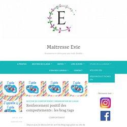 Renforcement positif des comportements : les brag tags – Maitresse Evie