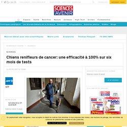 Chiens renifleurs de cancer: une efficacité à 100% sur six mois de tests - Sciencesetavenir.fr