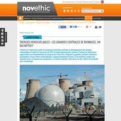 Énergies renouvelables : les grandes centrales de biomasse, un bio-mythe?
