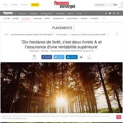 'Dix hectares de forêt, c'est deux livrets A et l'assurance d'une rentabilité supérieure'
