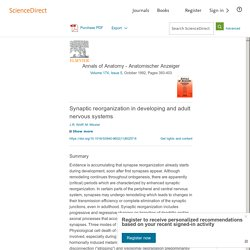 Synaptic reorganization in developing and adult nervous systems