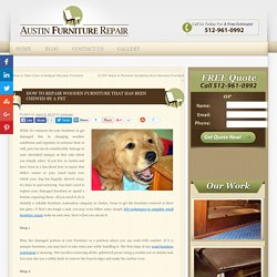 How to Repair Wooden Furniture that Has Been Chewed by a Pet