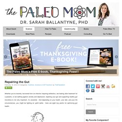 Repairing the Gut - The Paleo Mom