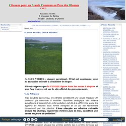 ALGUES VERTES, ON EN REPARLE - Citoyens au Pays des Olonnes