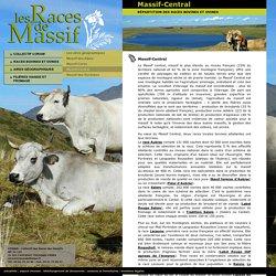 Répartition des races bovines et ovines dans les Massifs : Massif-Central