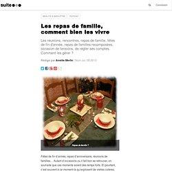 Les repas de famille, comment bien les vivre: Conflits, non-dits, secrets, colères, rancœurs, jalousie fraternelle
