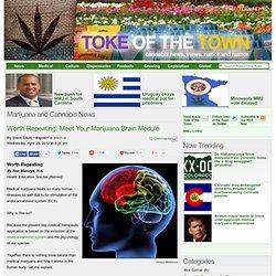 Meet Your Marijuana Brain Module