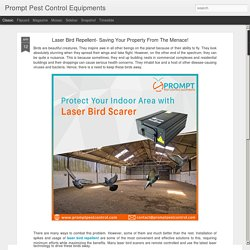 Bird Control Laser - It's Easy To Keep Away Birds From Your Property