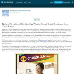Natural Repellent Oils: Healthy Way to Repel Small Creatures from Your Rooms : tianlongcomsg
