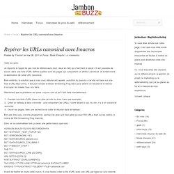 Repérer les URLs canonical avec Imacros « « Référencement & Web-Marketing