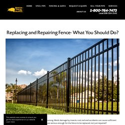 Replacing and Repairing Fence- What You Should Do?