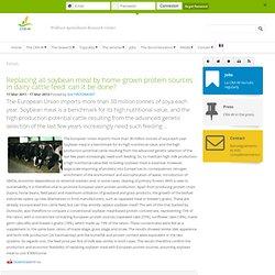 CRA-W 17/03/11 Remplacer la totalité du tourteau de soja par des sources protéiques autochtones dans l'alimentation de la vache