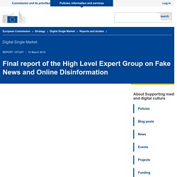 Final report of the High Level Expert Group on Fake News and Online Disinformation