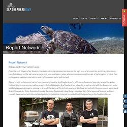 Report Network